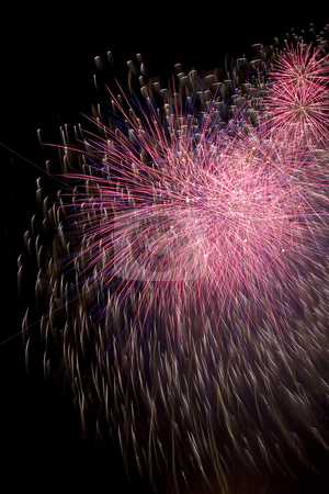 Firework stock photo, Purple and pink firework display trailing in the wind by Yann Poirier