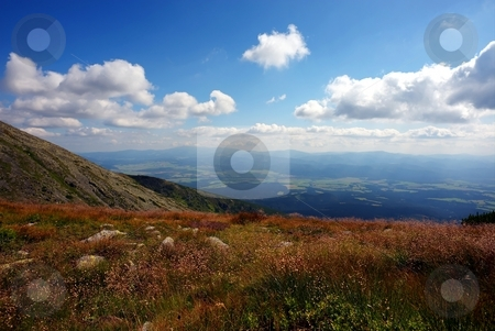 Mountain meadow stock photo, Mountain meadow with grass and flowers in sunlight and clouds on sky by Juraj Kovacik