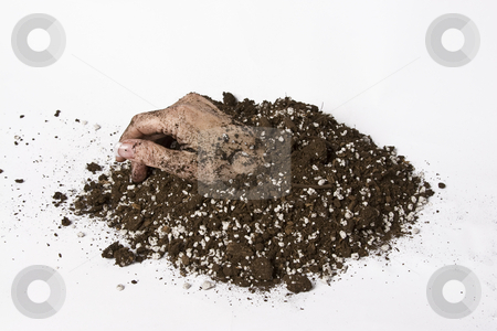 Digging yourself out stock photo, Women hand coming out of a patch of earth by Yann Poirier