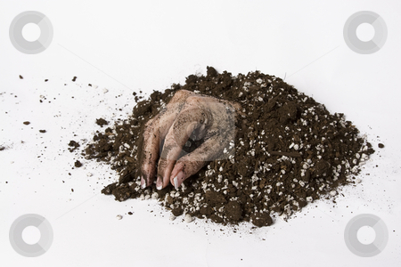 Dead hand stock photo, Women hand coming out of the earth by Yann Poirier