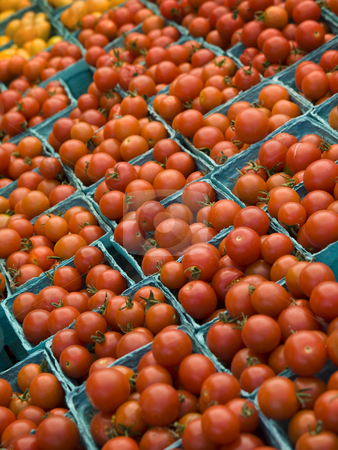 Market groceries stock photo, A few rows of red tomatoes in blue boxes. by Ignacio Gonzalez Prado