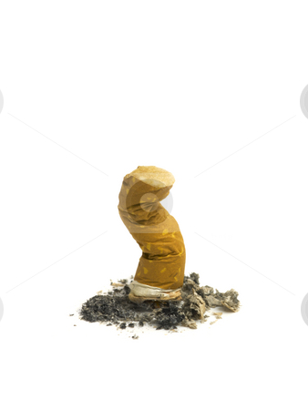 Cigarette stock photo, A single Isolated cigarette butt with ashes. by Ignacio Gonzalez Prado