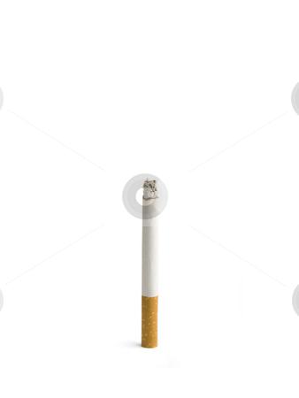 Cigarette stock photo, A single isolated cigarette burning up. by Ignacio Gonzalez Prado