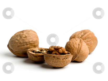 Walnuts stock photo, Walnuts close up on white background. by Ignacio Gonzalez Prado