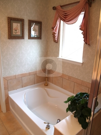 Luxury Bath stock photo, Huge bath tub in a master bathroom by Cora Reed