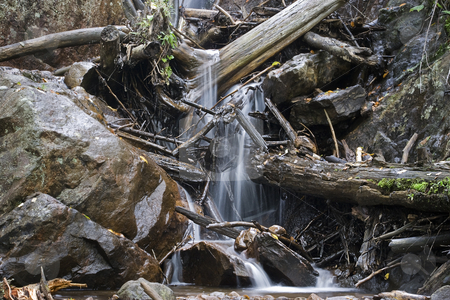 Rocky waterfall stock photo, Waterfall passing in a forest with tree debris in it's path by Yann Poirier