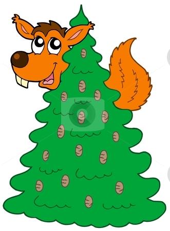 Squirrel on coniferous tree stock vector clipart, Squirrel on coniferous tree - vector illustration. by Klara Viskova