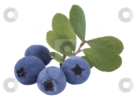 Bunch of fresh blueberries stock photo, Bunch of fresh blueberries isolated on white background by Valery Kraynov