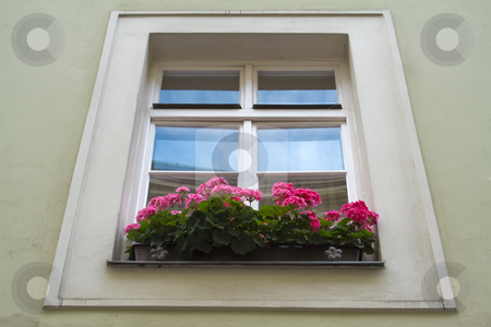 Flowerbox and window stock photo, Flowerbox and window by Dmitry Mirlin
