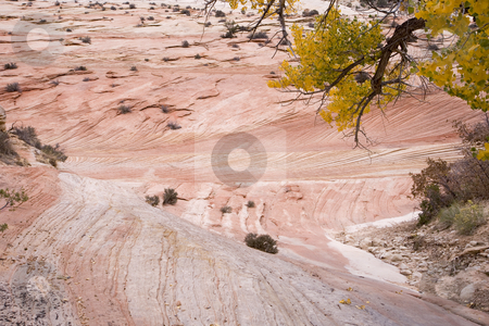 Pink ripples in the rock stock photo, Mountain in Grand Staircase National Park in Utah by Sharron Schiefelbein
