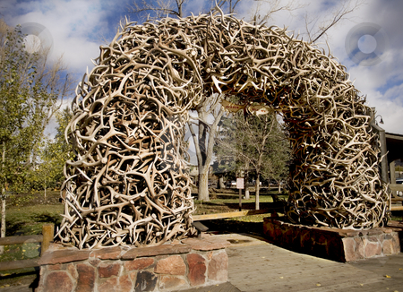 Stack of Antlers from the Elk reserve stock photo, Stack of Antlers from the Elk Wildlife Reserve in Wyoming by Sharron Schiefelbein