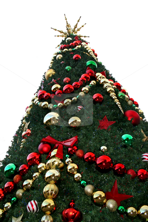 Christmas Tree stock photo, A close-up of a large Christmas Tree. by Lucy Clark