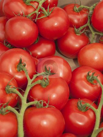 Fresh tomatoes on the vine stock photo, Fresh ripe tomatoes on the vine on market stall by Mike Smith