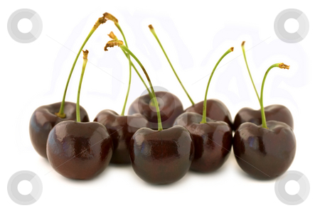 Group of red cherries stock photo, Group of dark red cherries, with stalks. Isolated on white background, with shadow. by Natalia Banegas