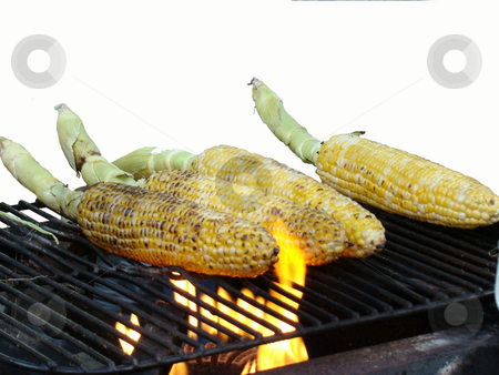 Grilled bbq Corn on the cob stock photo, Grilled bbq Corn on the cob isolated on white by CHERYL LAFOND
