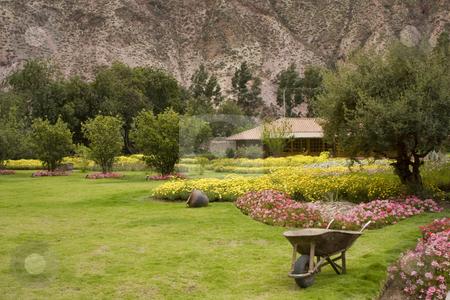 Garden in Yucay Valley Peru stock photo, A beautiful garden in the Yucay Valley found, Peru, South America by Sharron Schiefelbein