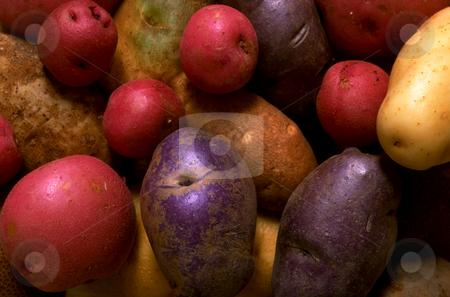Potatoes stock photo, Potatoes by David Ryan