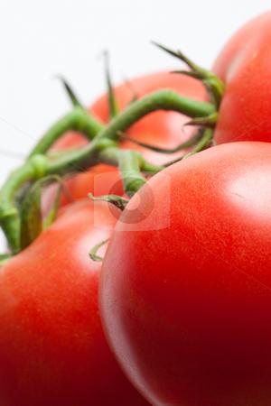 Tomatoes stock photo, Close-up of fresh organic tomatoes in studio by Jose Wilson Araujo