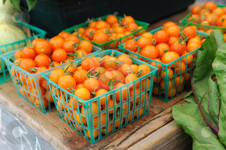 Cherry Tomatoes stock photo, Baskets of small orange cherry tomatoes on display for sale at the farmers market by Lynn Bendickson