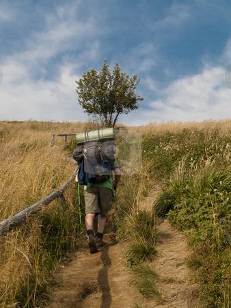 Mountain trekking stock photo, Man on the mountain path - mountain trekking in polish mountain by Tomasz Parys