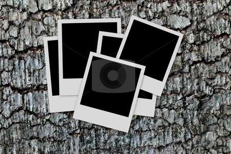 Photo frames on wood background stock photo, Pile of  empty photo frames  on wood background by Laurent Dambies