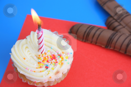 Sweet Treats stock photo, Vanilla cupcake with one candle and chocolated covered cookies by Vanessa Van Rensburg