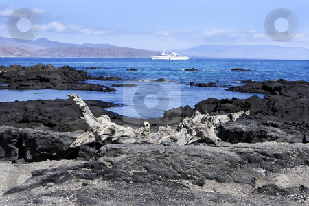 Landscape of the Galapagos Islands stock photo, Seascape of the Galapagos Islands, Peru, South America by Sharron Schiefelbein