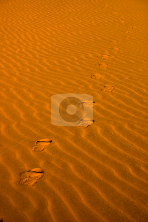 Footsteps in the sand stock photo, Footsteps going into the distance on wind eroded sand by Darren Pattterson
