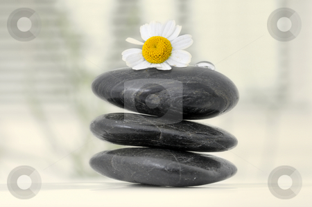 Stone tower with camomile stock photo, Stone tower with camomile and water drop by Carmen Steiner