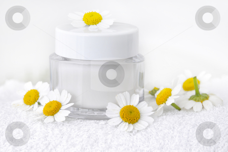Skin cosmetic stock photo, Skin cosmetic with camomile by Carmen Steiner