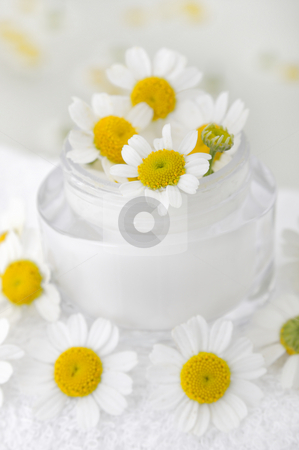 Skin cream with camomile stock photo, Skin cream with camomile by Carmen Steiner