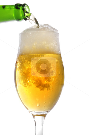 Beer stock photo, Beer in front of a white background by Carmen Steiner