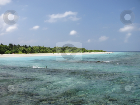 Tropical beach on Maldives Islands stock photo, Tropical beach on Maldives Islands by Sharron Schiefelbein