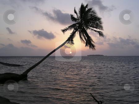 Sunset on a tropical beach on Maldives Islands stock photo, Sunset on a tropical beach on Maldives Islands by Sharron Schiefelbein