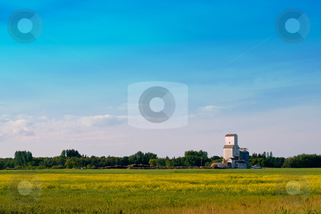 Prairie Field stock photo, A prairie field with a grain elevator in the distance shot with lots of copyspace in the sky by Richard Nelson