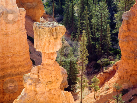 Top of Thor's Hammer, Bryce stock photo, A close shot of the top of Thor's Hammer, a