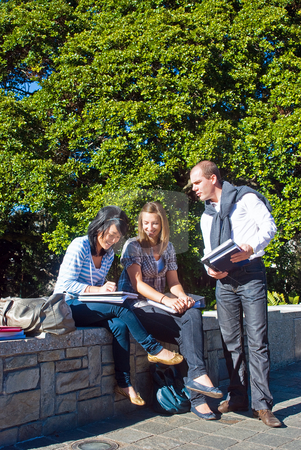 Comparing notes stock photo, Three students comparing notes in a university park on a beautiful sunny day by Corepics VOF
