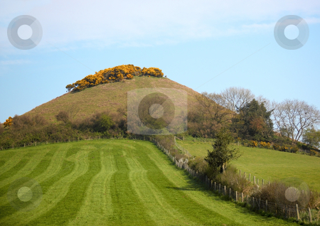 Grassy hill on a spring day stock photo, A beautiful freshly mown grassy hill on a spring day by Mike Smith