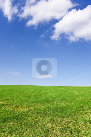Grass and sky stock photo, An image of green grass with a beautiful blue summer sky by Mike Smith