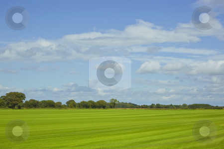 Commercial turf field stock photo, A field of newly cut commercial turf under a summer sky by Mike Smith