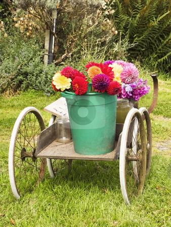 Roadside flowers stock photo, Roadside flowers for sale in summer by Mike Smith