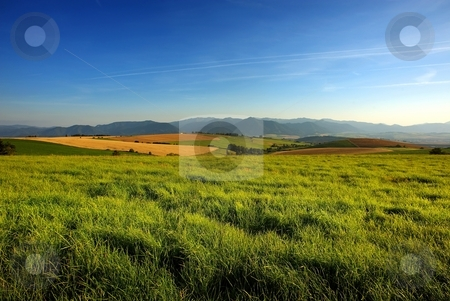 Grass on meadow stock photo, Grass on a meadow with fields, mountains and blue sky by Juraj Kovacik