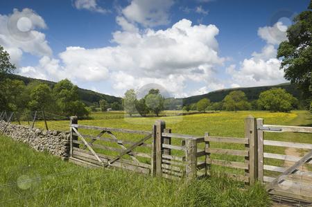 Langstrothdale stock photo, Langstrothdale in Yorkshire Dales North Yorkshire England by Stephen Meese