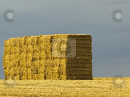 Stack of bales on hilltop stock photo, A stack of big square bales on a hilltop at harvest time in summer by Mike Smith