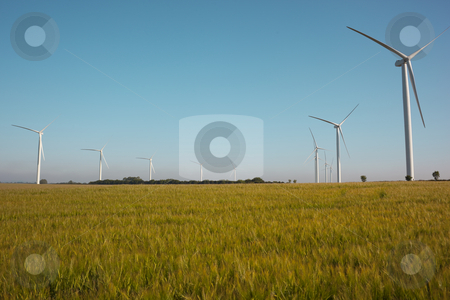 Wind turbines on horizon of barley field stock photo, Wind turbines on horizon of barley field on summer day by Mike Smith