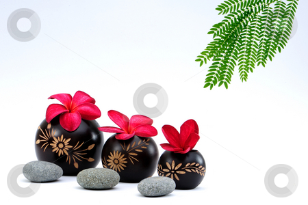 Spa deco  stock photo, Spa deco on white background by Jaggat Images