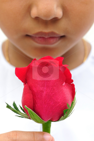 Rose in hand stock photo, Beautiful red rose in hand by Jaggat Images