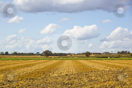 Farming landscape stock photo, Patterns on cultivated stubble field under a summer sky by Mike Smith
