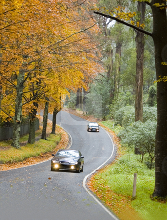 Cars Driving a Windy Road in Autumn stock photo, Two cars driving along a windy road among red and orange autumn trees. by Lee Torrens