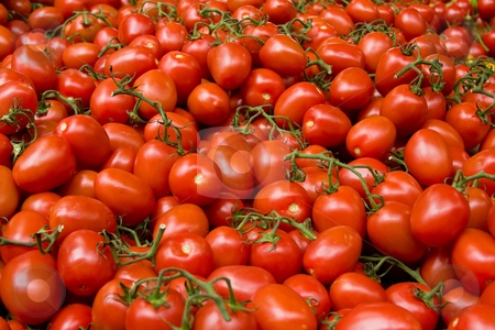 Tomatoes stock photo, Lots of vine tomatoes in a marketplace by Gabriele Mesaglio